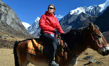 Pony trekking in Nepal