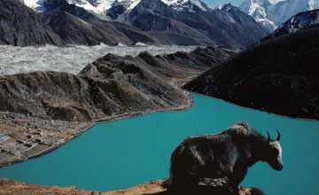 Gokyo valley fifth lake trekking